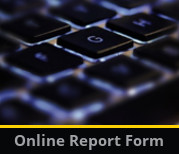 Academic online report